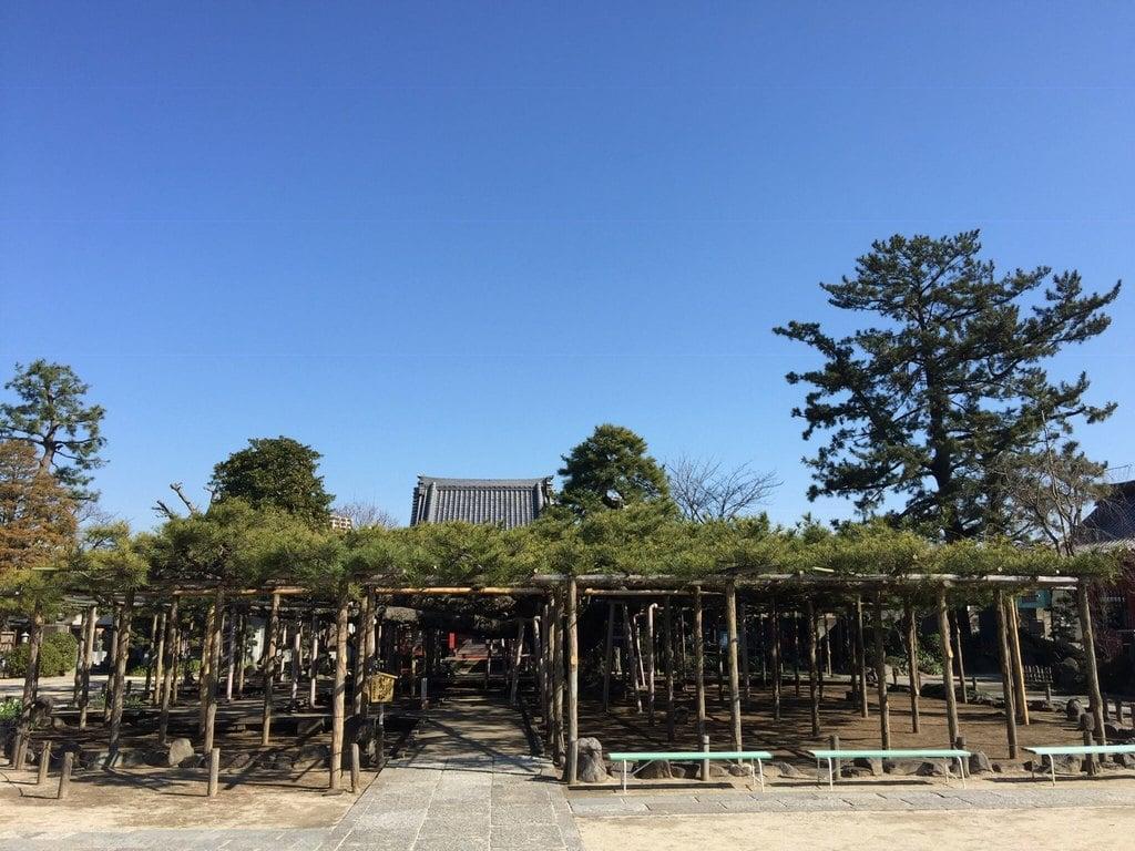 善養寺(東京都)