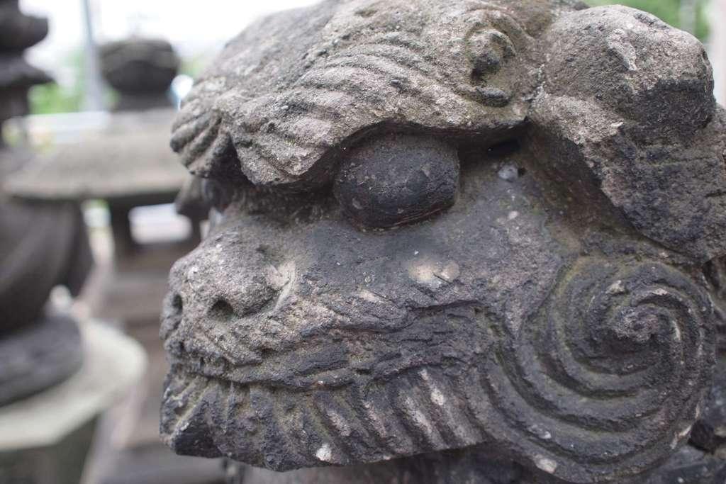 成田山札幌別院新栄寺の狛犬
