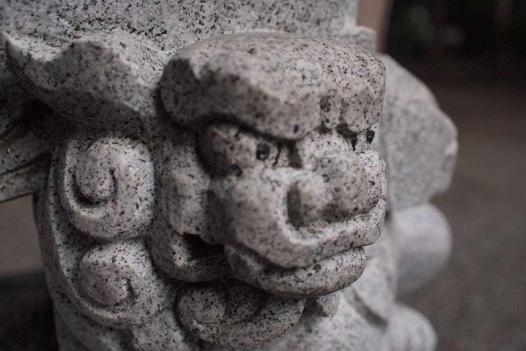 琴似神社の狛犬