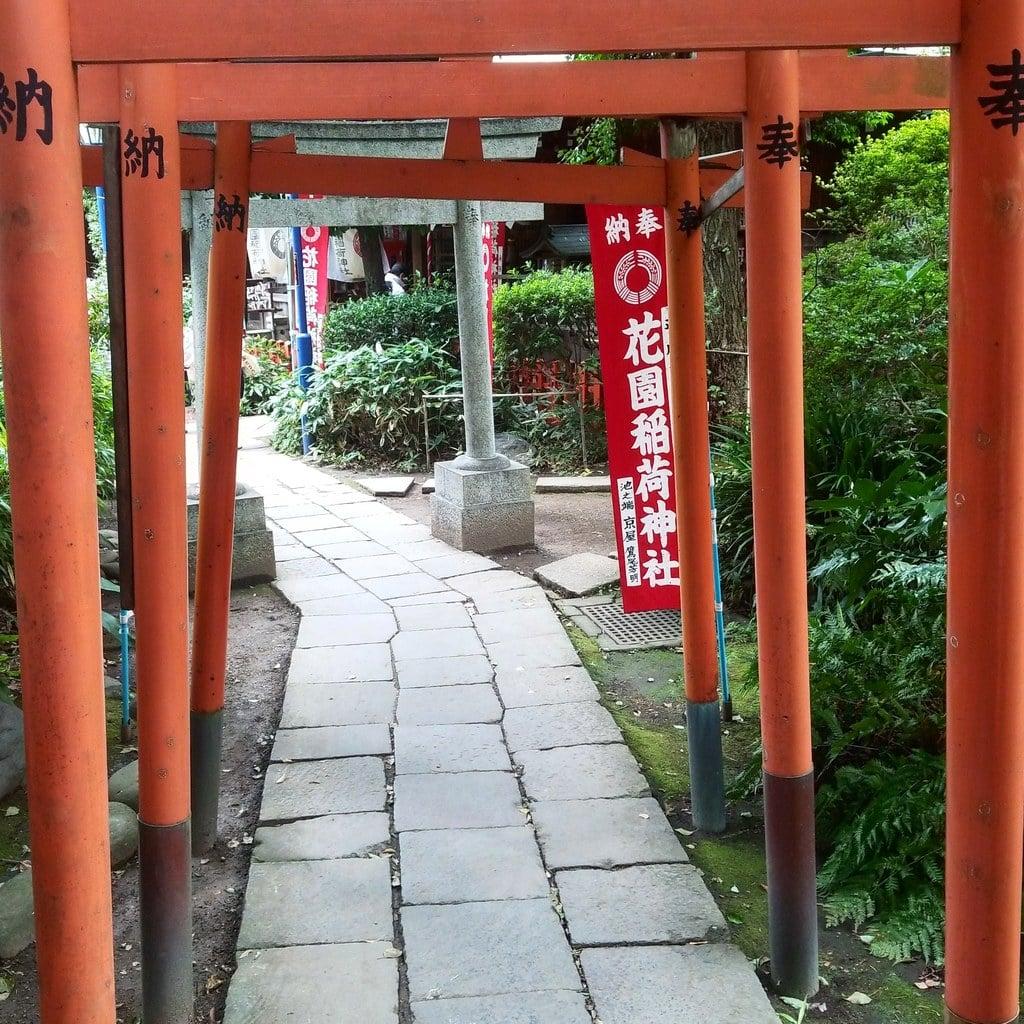 花園稲荷神社の建物その他