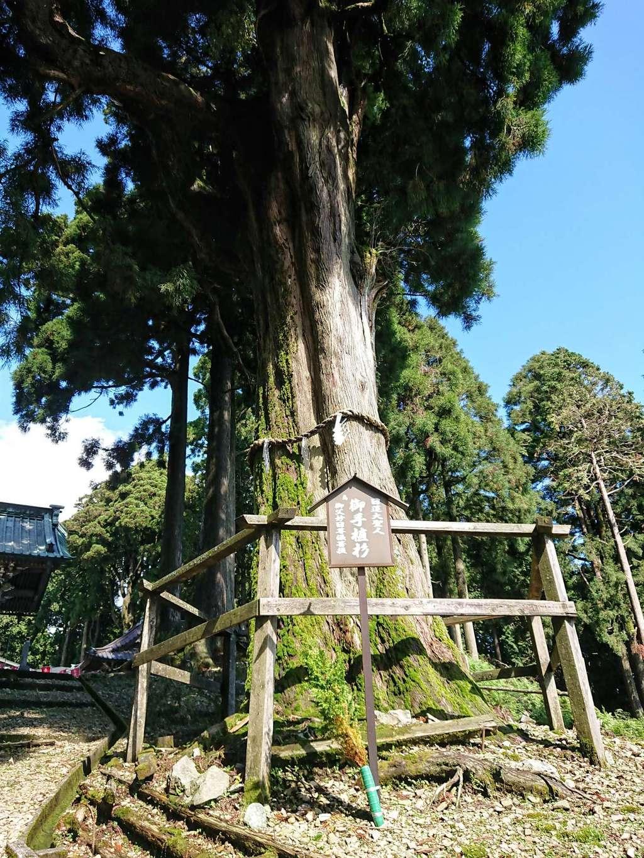 久遠寺の自然