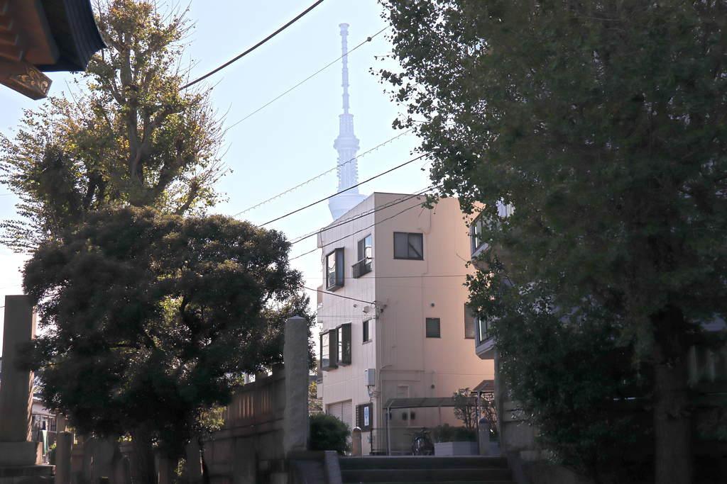 白鬚神社の建物その他