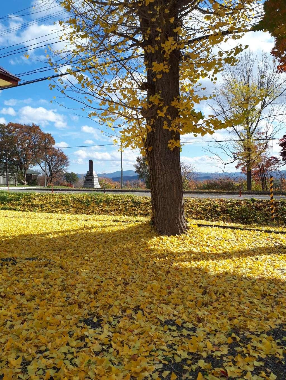 浦臼神社の庭園