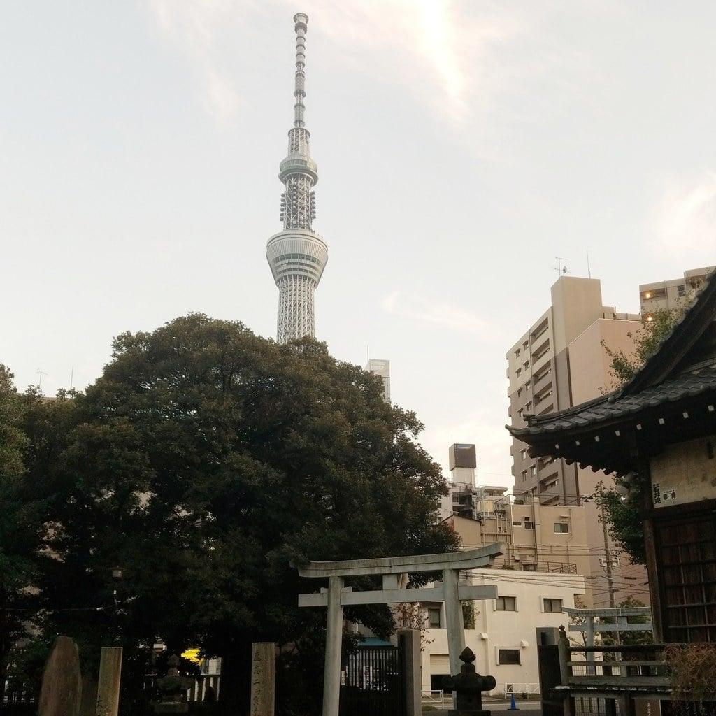 三囲神社(三越神社)の景色