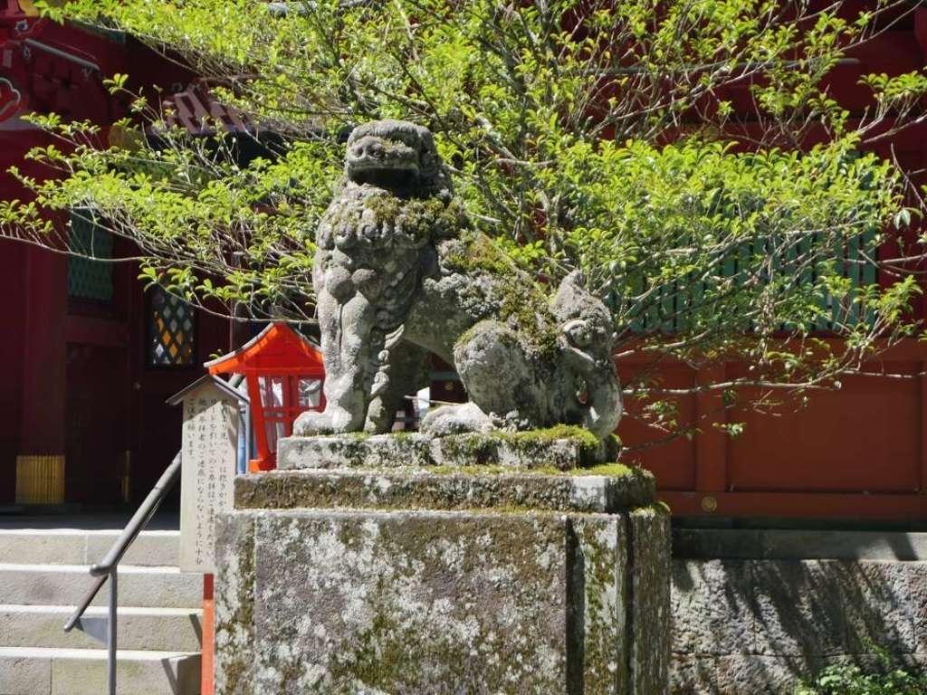 箱根神社の狛犬