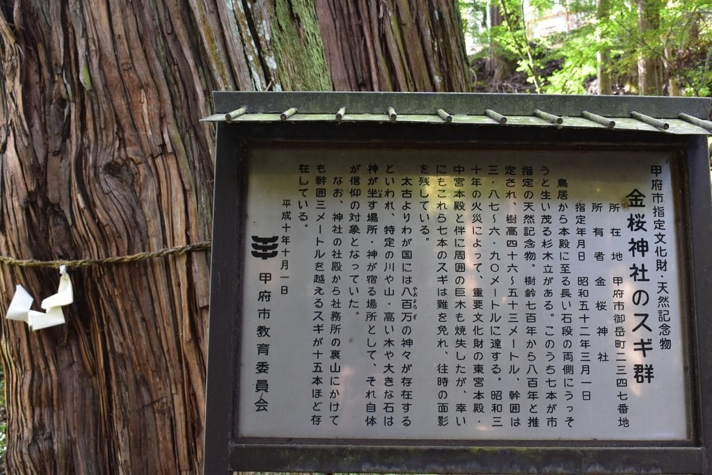 金櫻神社の歴史