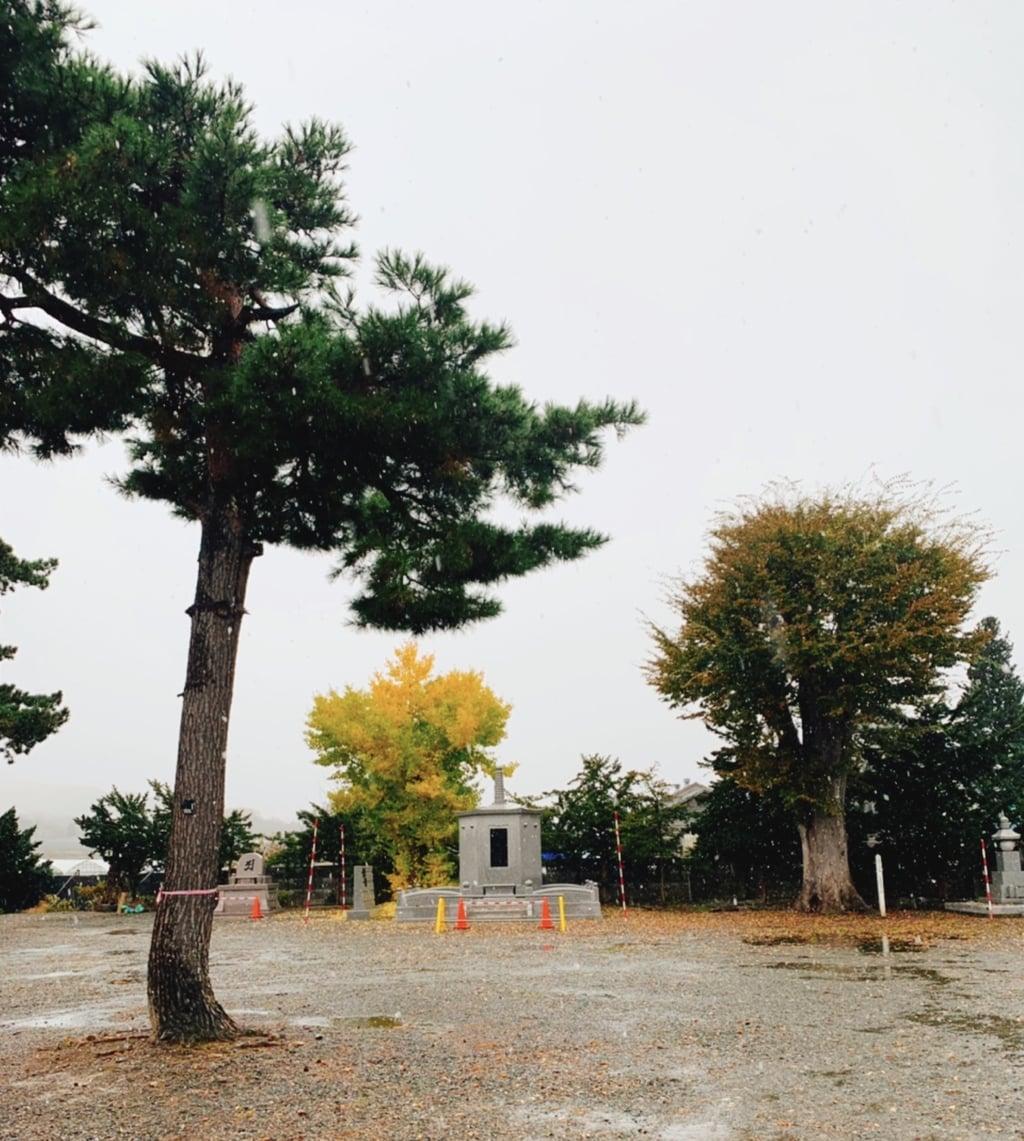 仁玄寺の建物その他