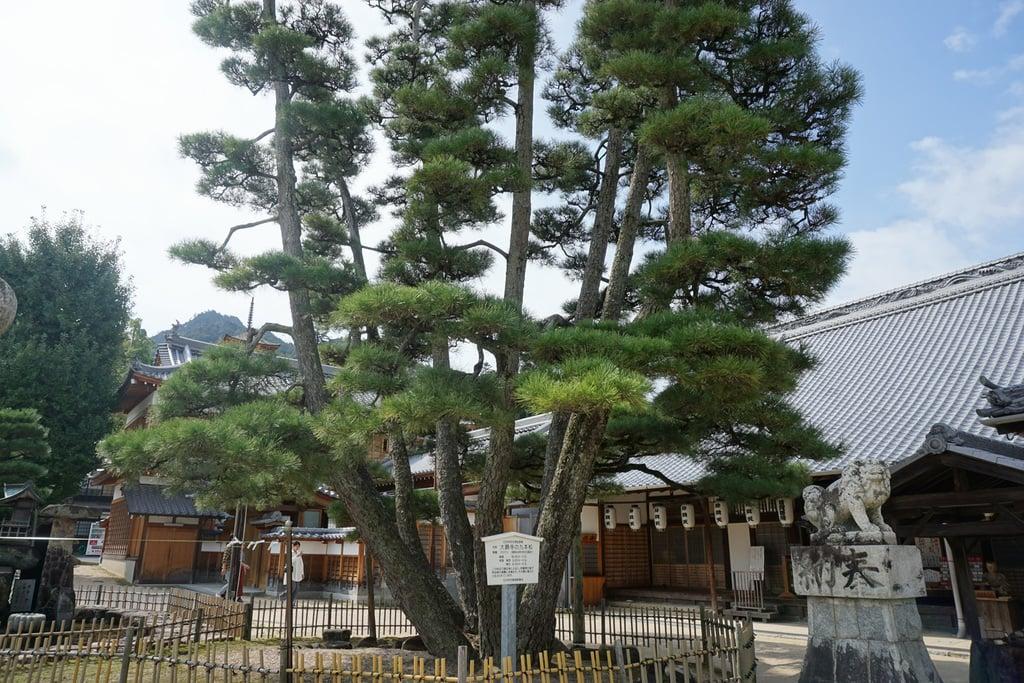 大願寺(広島県)