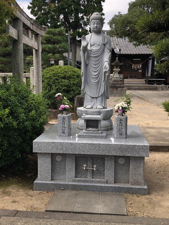 三河善光寺 無量寺の仏像