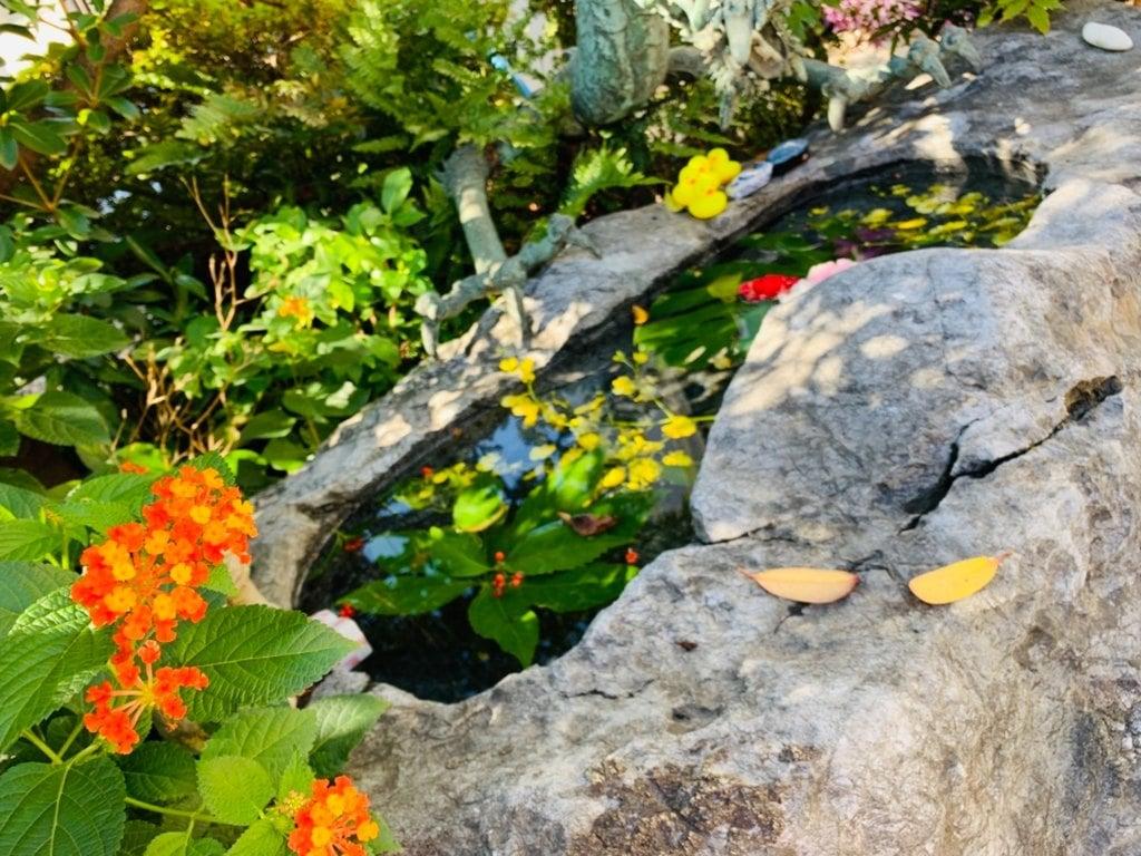 三輪神社の自然