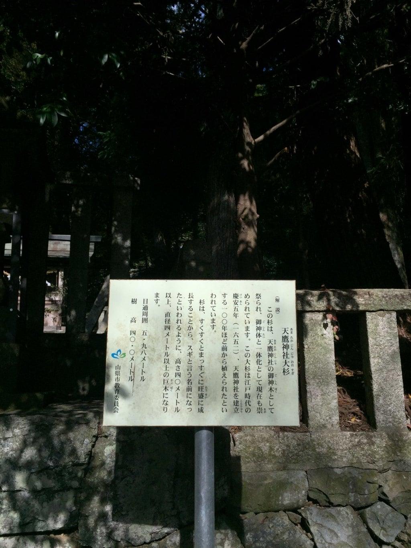 天鷹神社の歴史