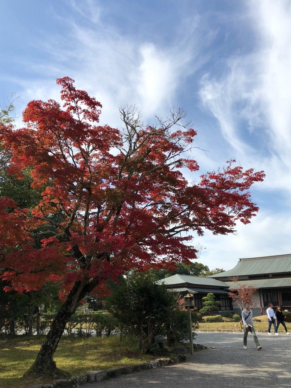 宇佐神宮の庭園