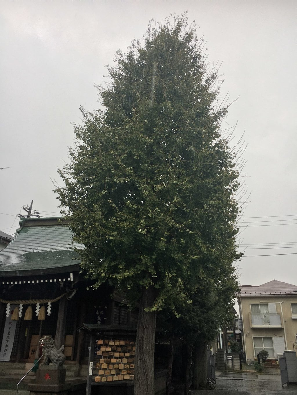東林間神社(神奈川県)