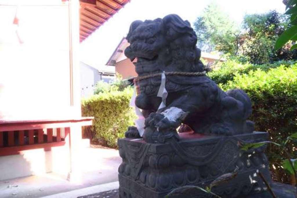 安行氷川神社の狛犬