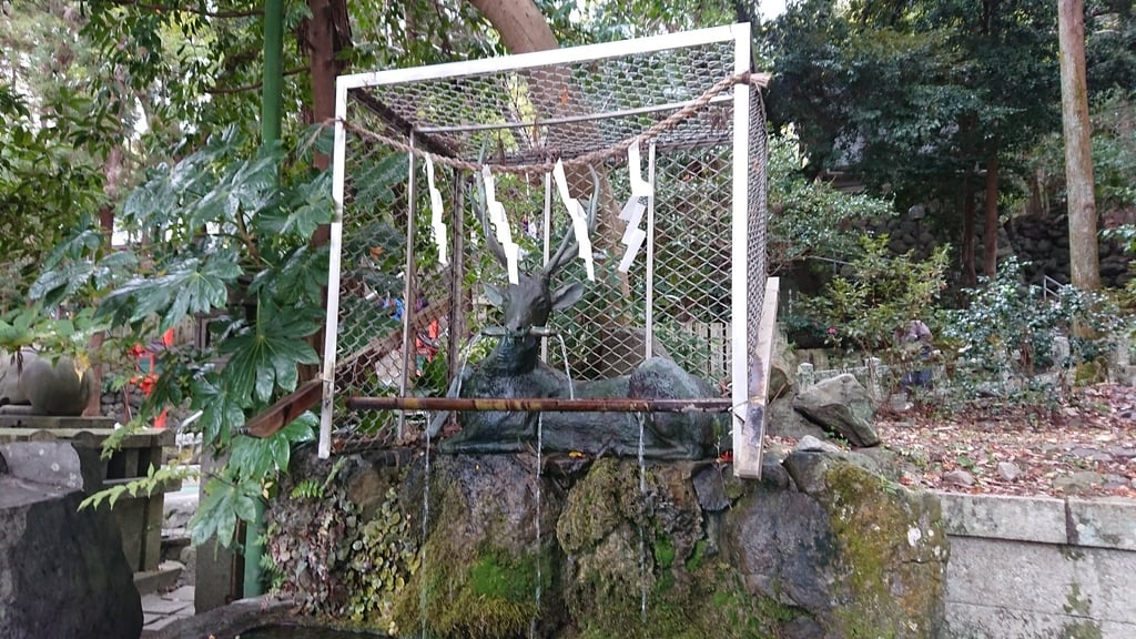 枚岡神社の手水