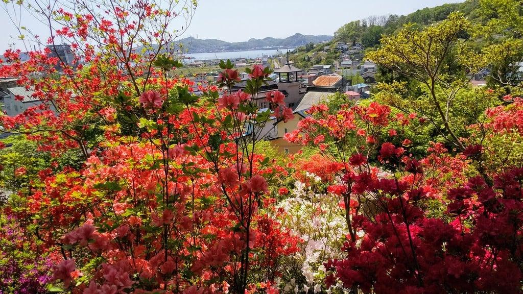 本輪西八幡神社の景色
