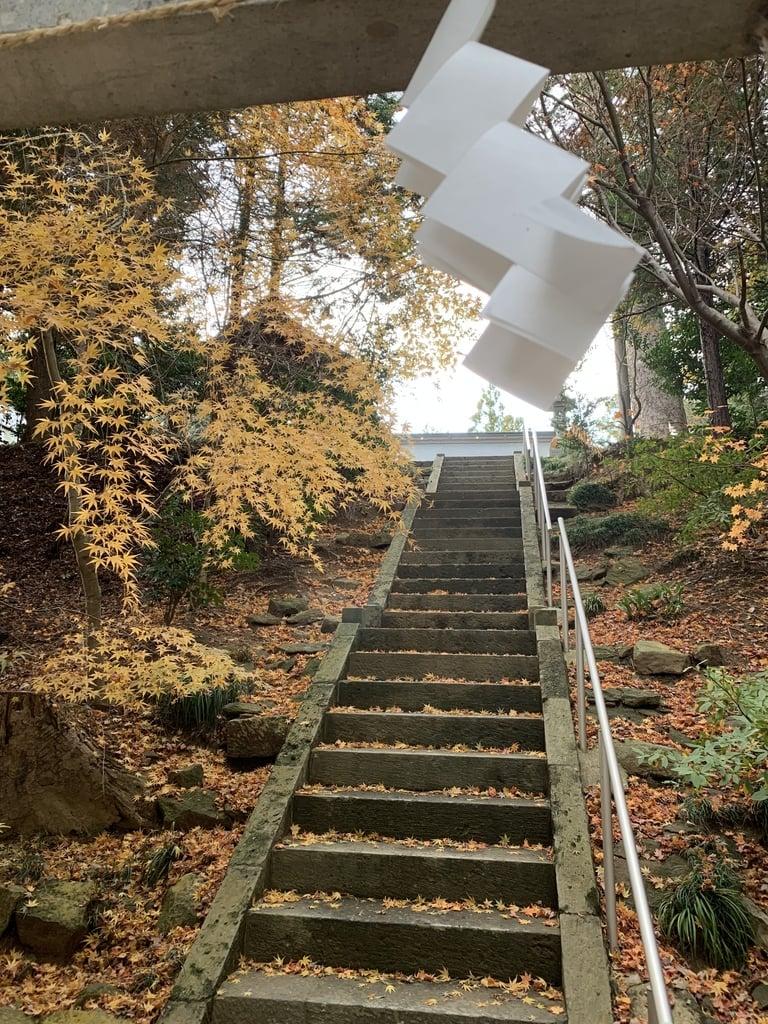滑川神社 - 仕事と子どもの守り神の景色