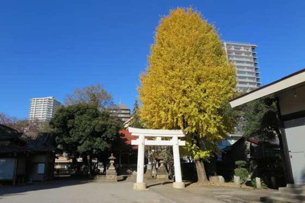 飯塚氷川神社の建物その他