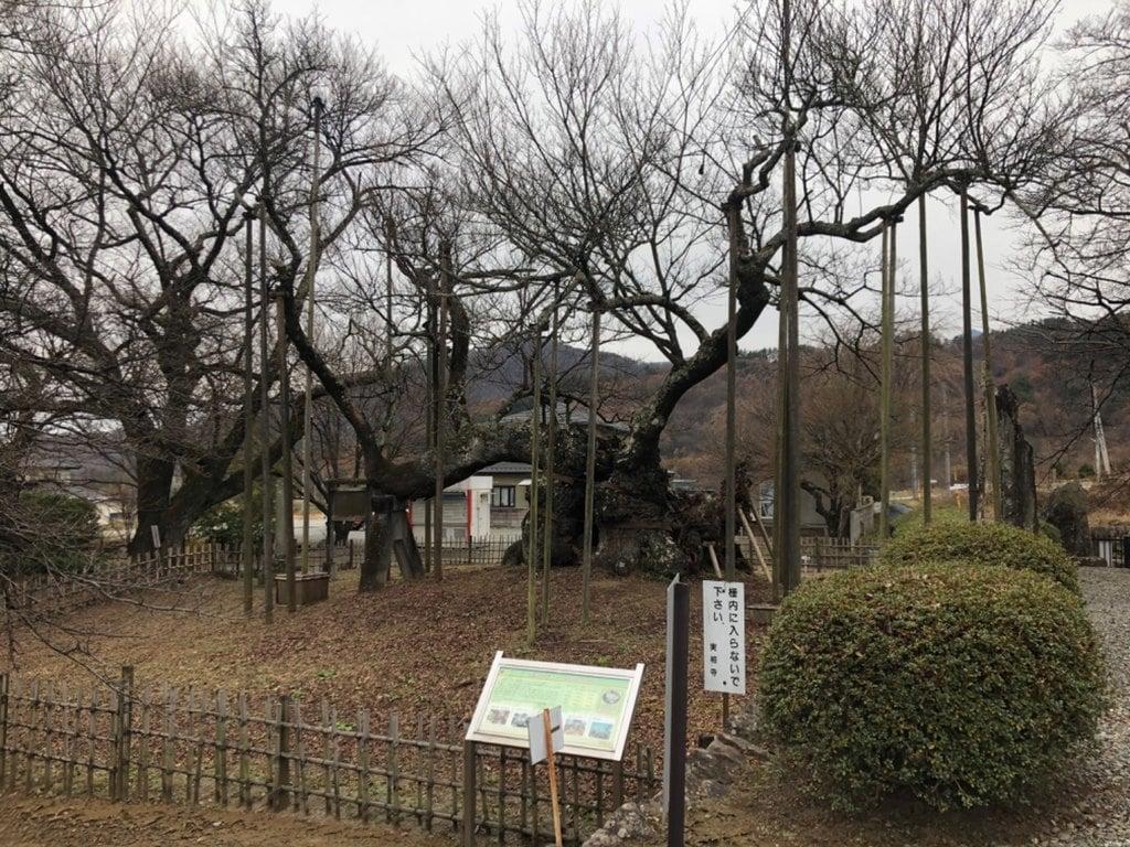 実相寺(山梨県)