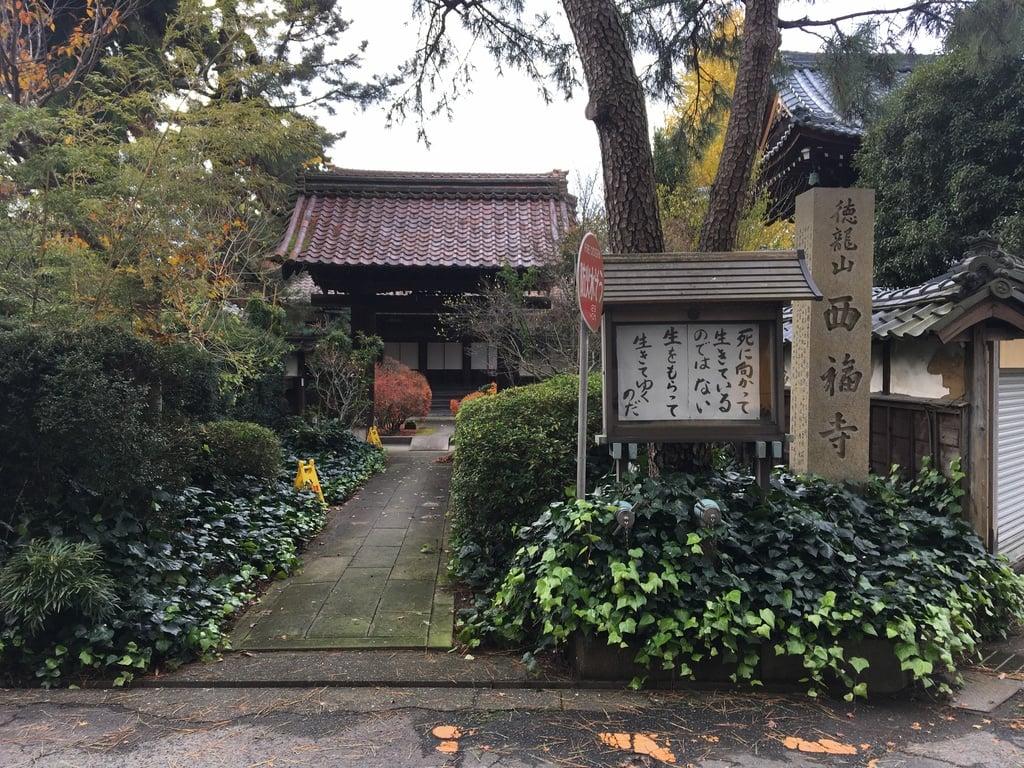 西福寺の山門