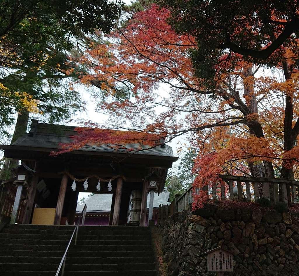 唐澤山神社の山門