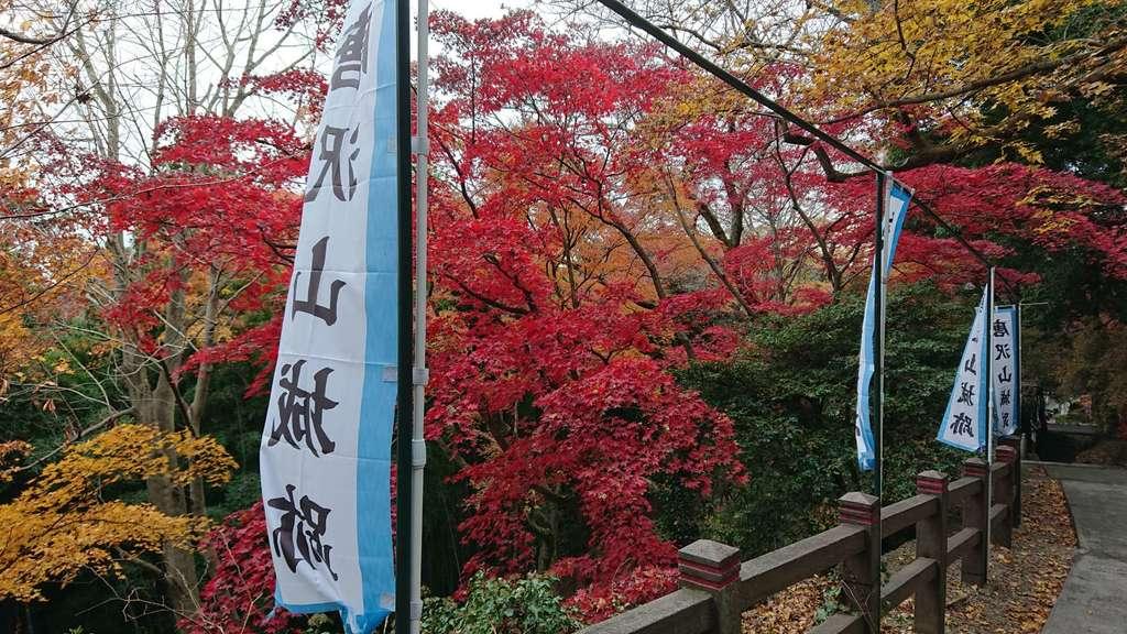 唐澤山神社の庭園