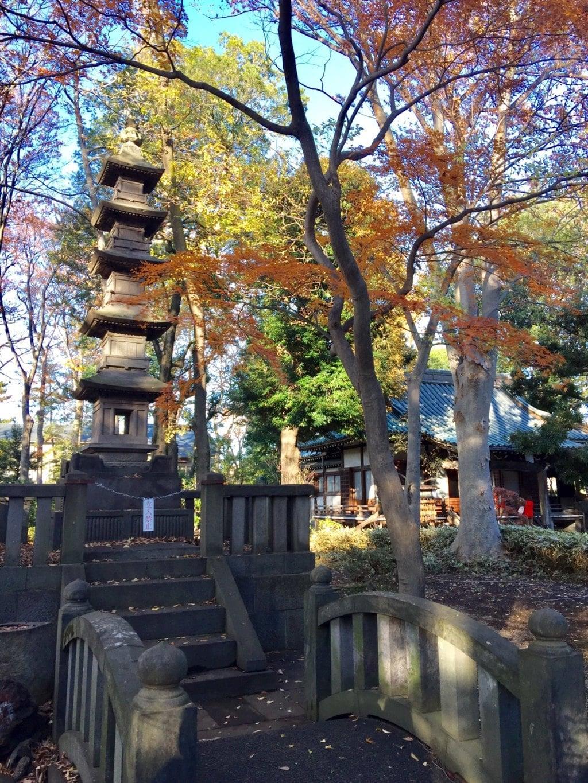 妙法寺の塔