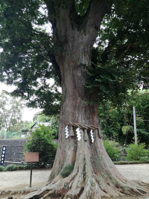 素鵞神社(茨城県)