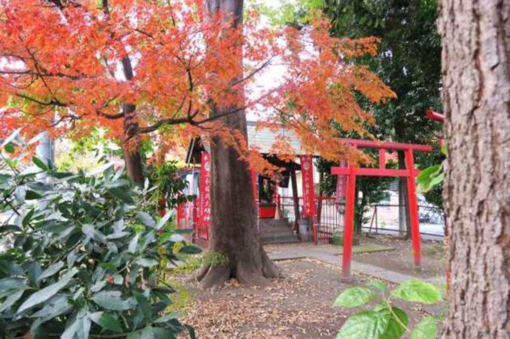 三和稲荷神社の建物その他