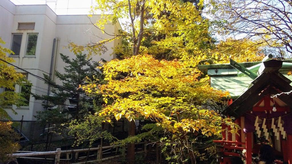 白石神社の景色
