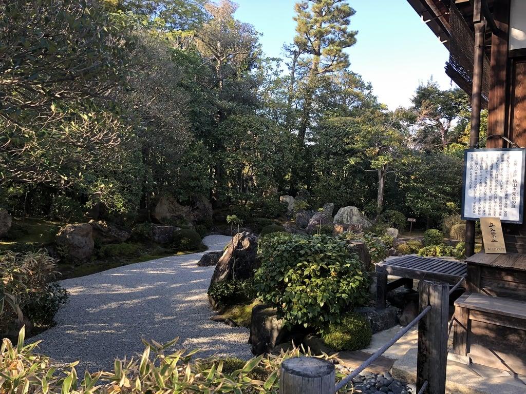 退蔵院(京都府)