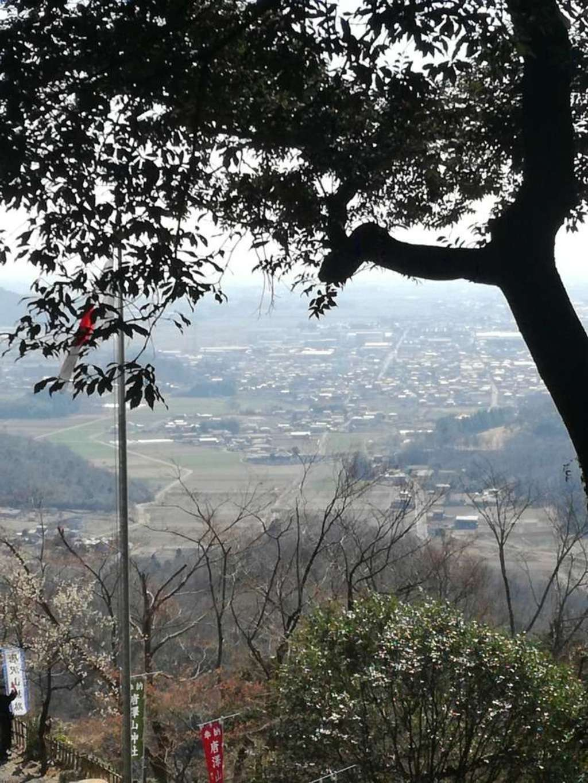 唐澤山神社の景色