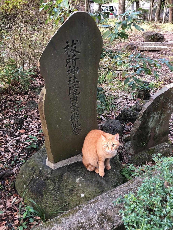 三嶋大社の動物