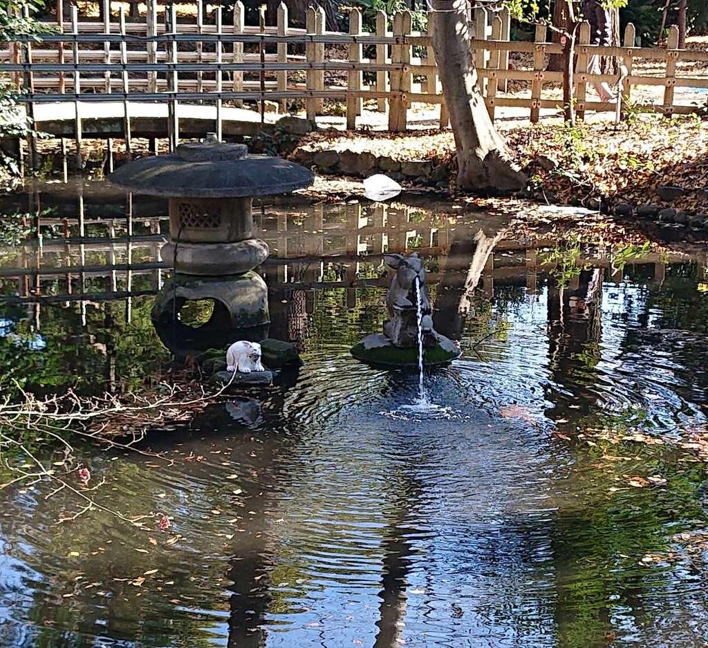調神社の庭園