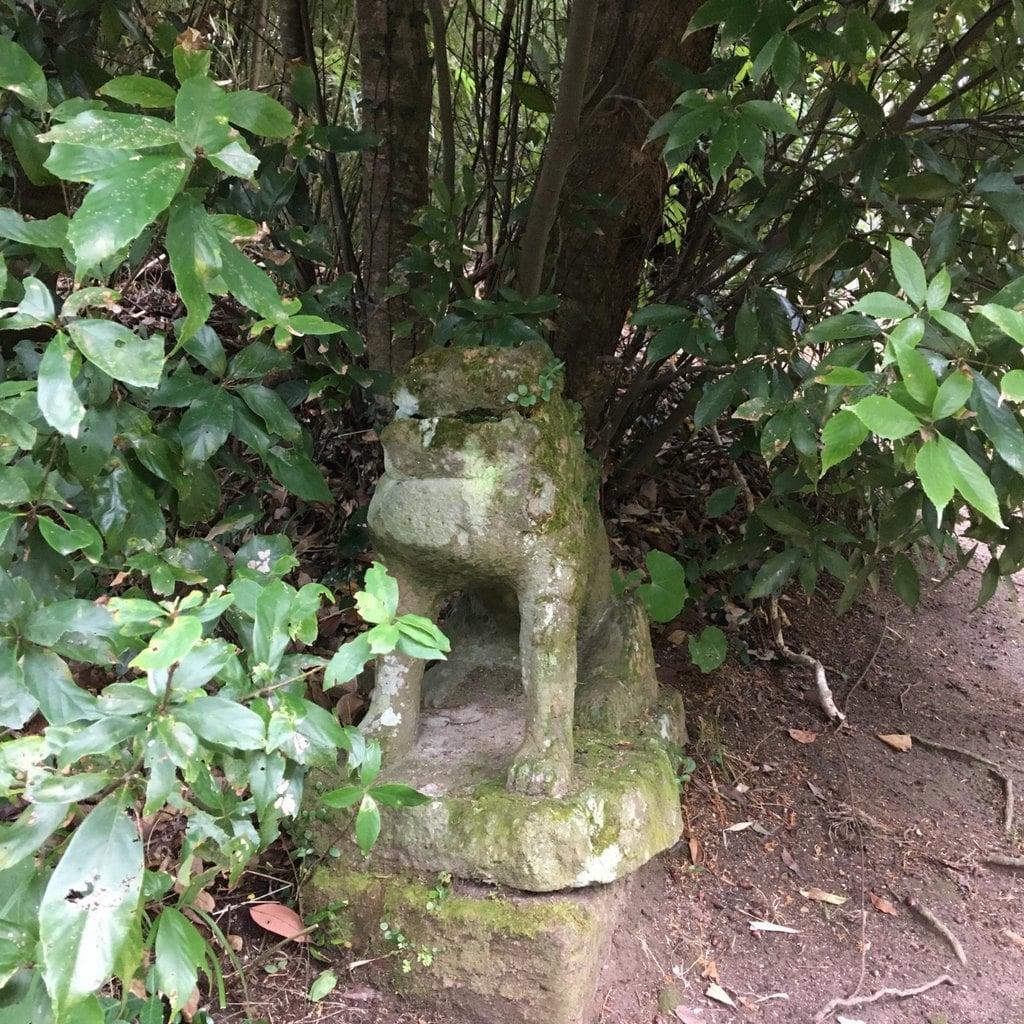 南方神社の狛犬