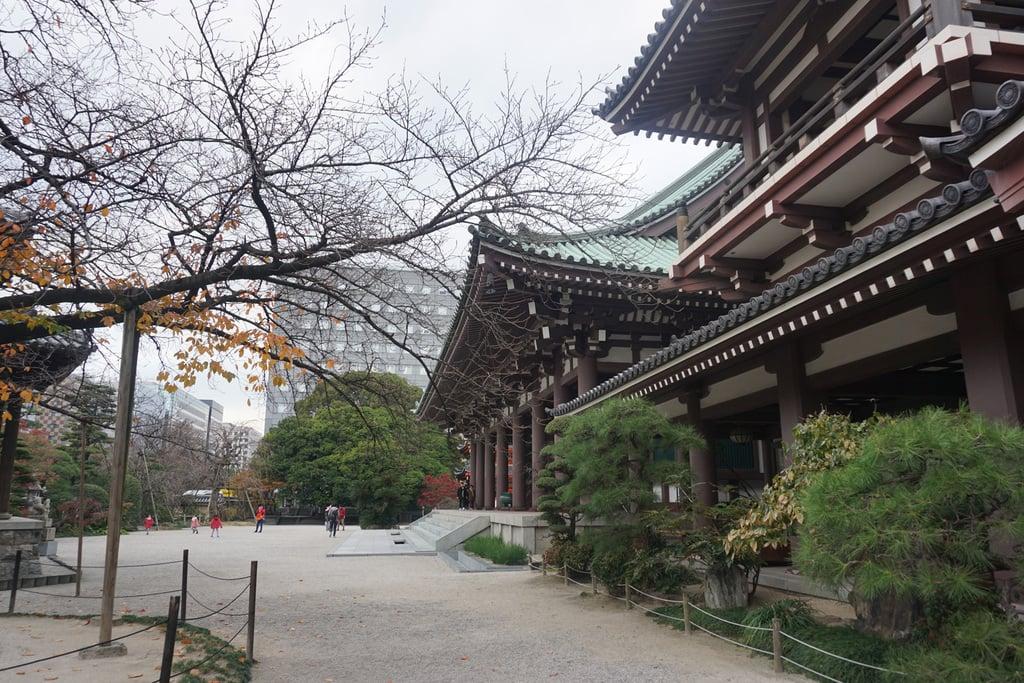 東長寺の建物その他