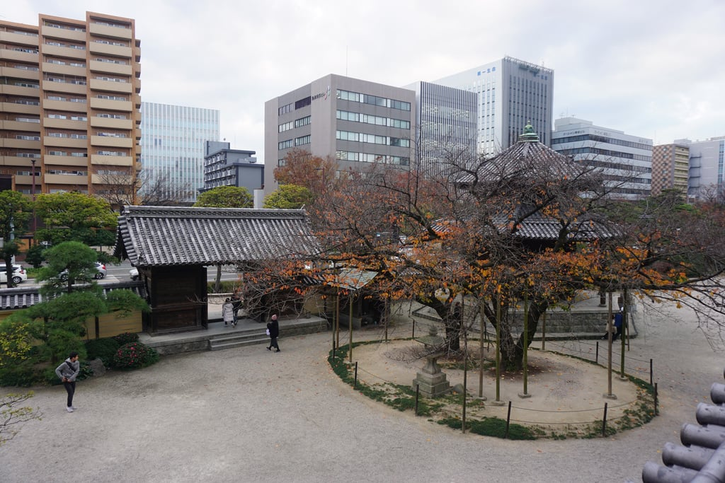 東長寺の景色