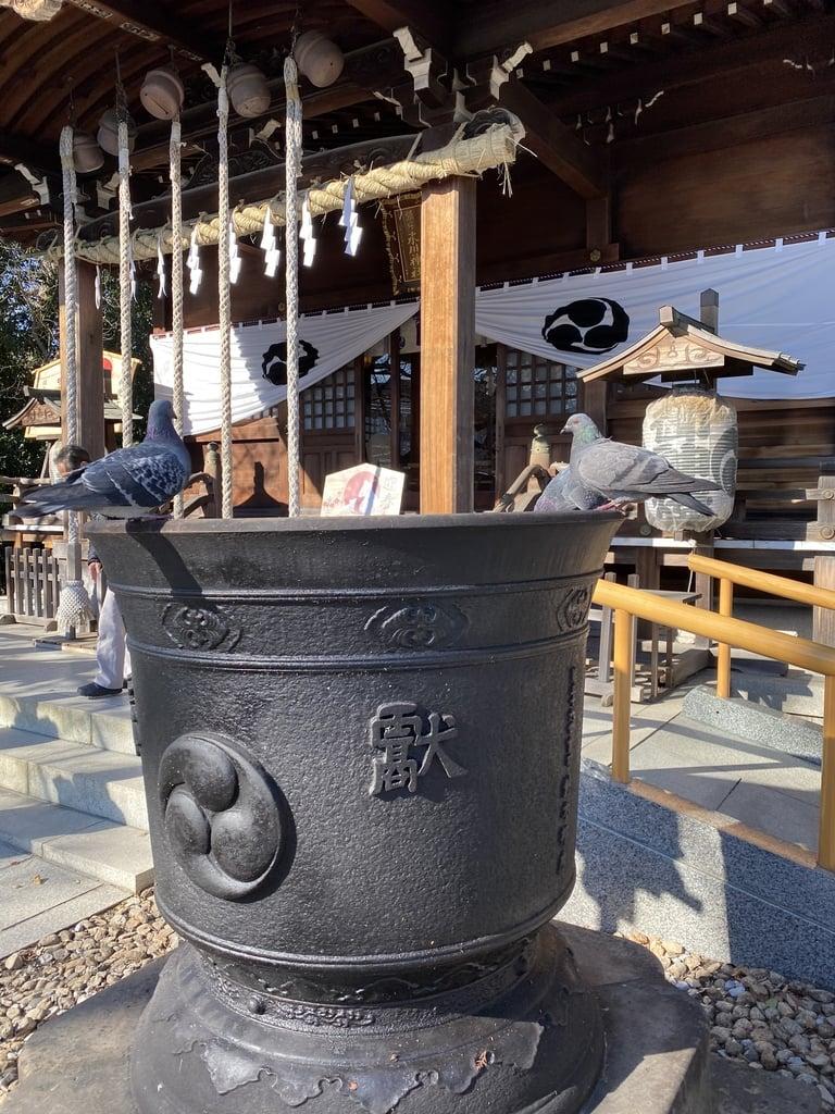 鎮守氷川神社の動物