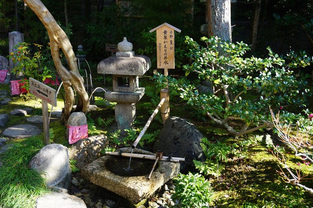 六道珍皇寺の手水