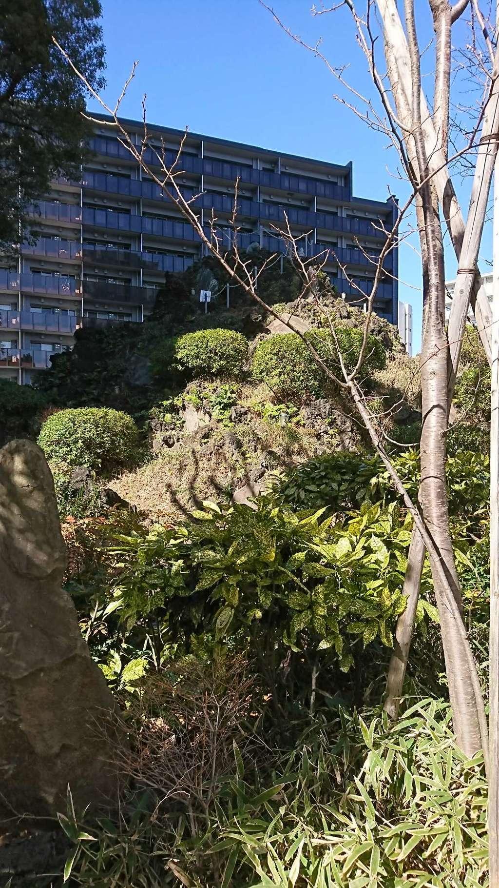 成子天神社の建物その他