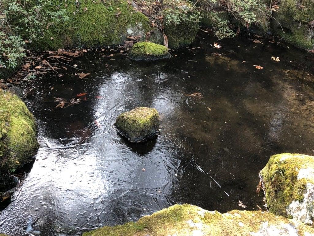 東口本宮冨士浅間神社の庭園