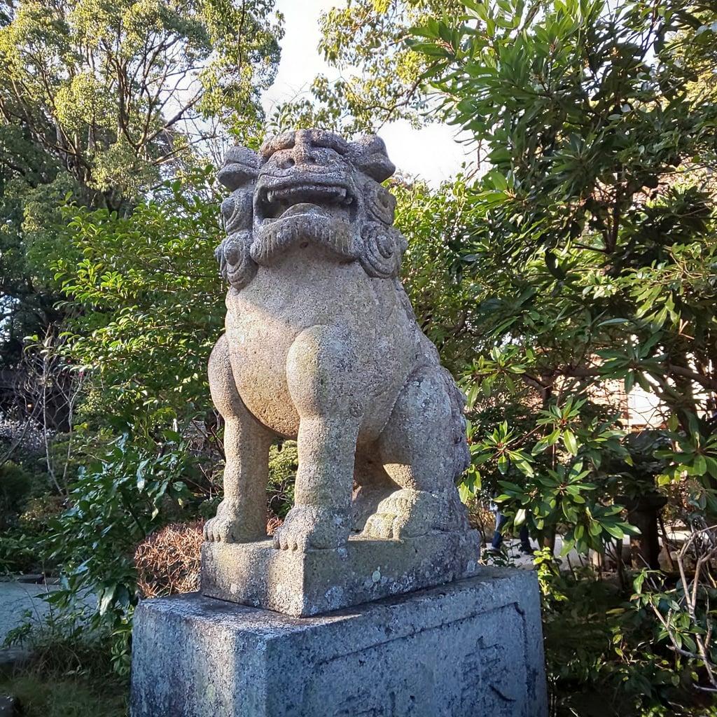 報徳二宮神社の狛犬
