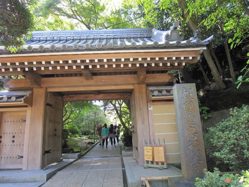 報国寺の山門