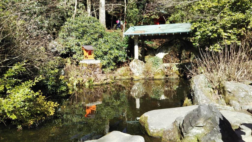 箱根神社の庭園