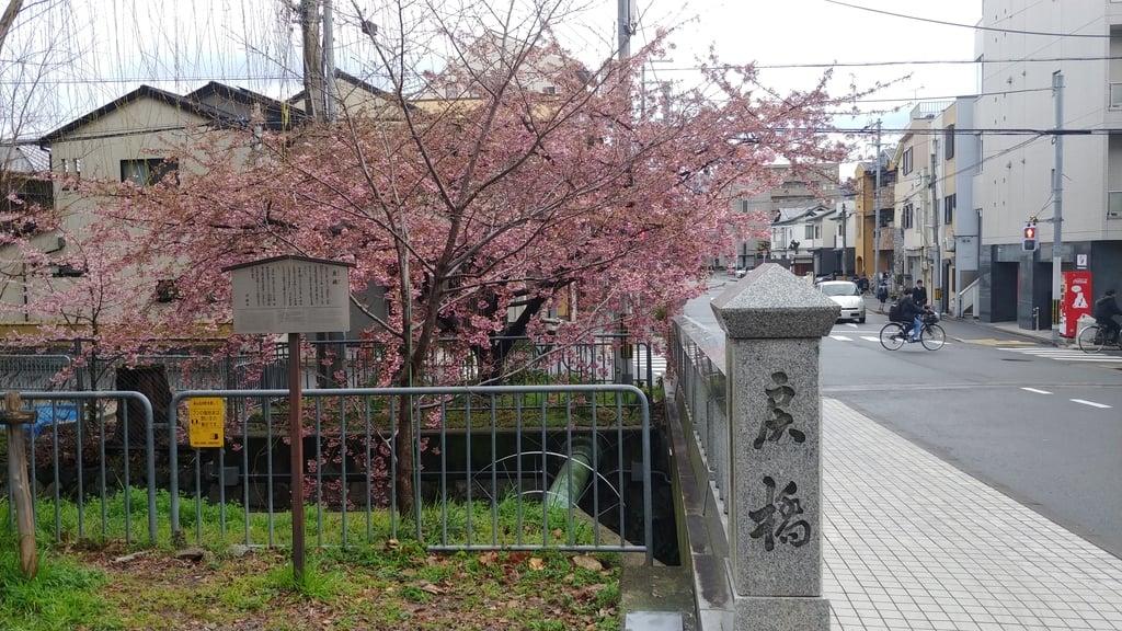 晴明神社の周辺