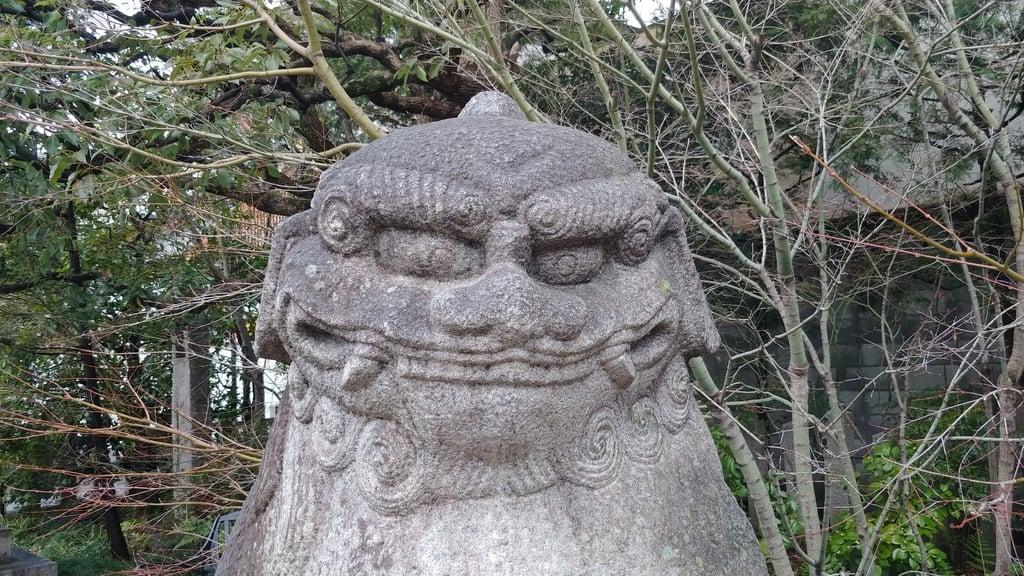 晴明神社の狛犬