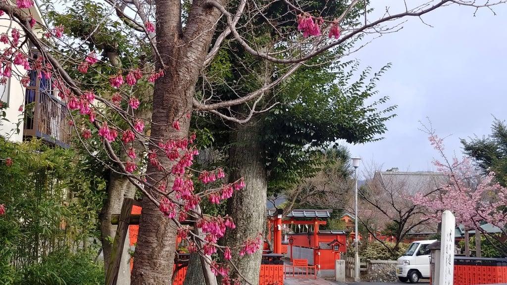 車折神社(京都府)