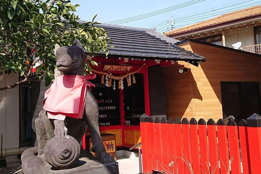 於菊稲荷神社の狛犬
