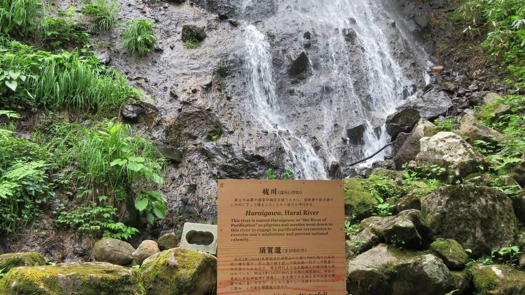 出羽三山神社  羽黒山三神合祭殿の自然