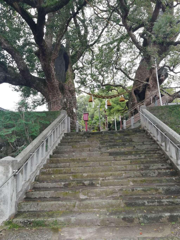 山王神社の建物その他